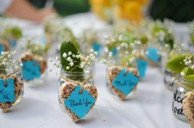 cadeau-invite-graines-a-planter-5