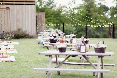 Southern-wedding-picnic-reception