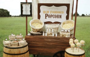 wedding-vibe-pop-corn-300x190